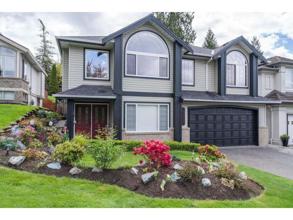 Main Photo: 10465 TAMARACK Crescent in Maple Ridge: Albion House for sale : MLS®# R2167546