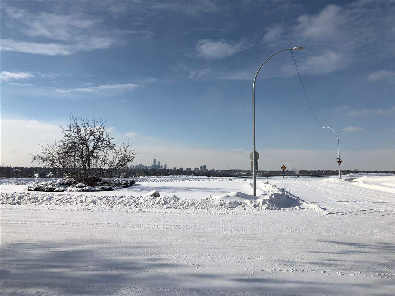 Main Photo: 3649 106 Avenue in Edmonton: Zone 23 Vacant Lot for sale : MLS®# E4141229