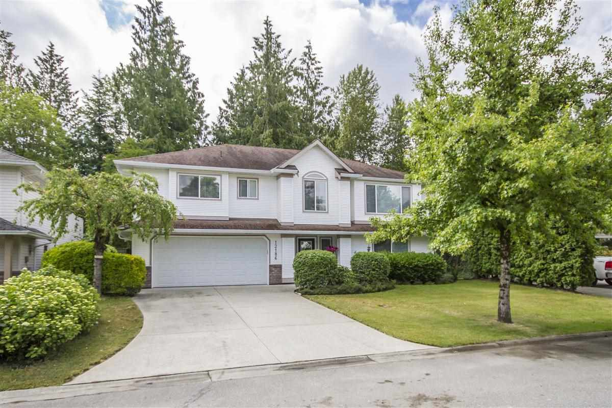 """Main Photo: 12186 238A Street in Maple Ridge: East Central House for sale in """"MEADOWRIDGE ESTATES"""" : MLS®# R2276907"""