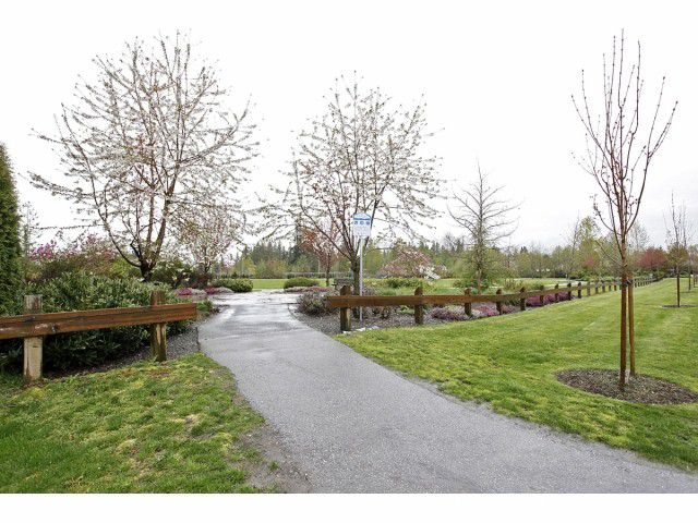 "Photo 17: Photos: 5135 223 Street in Langley: Murrayville House for sale in ""Murrayville"" : MLS®# F1409186"