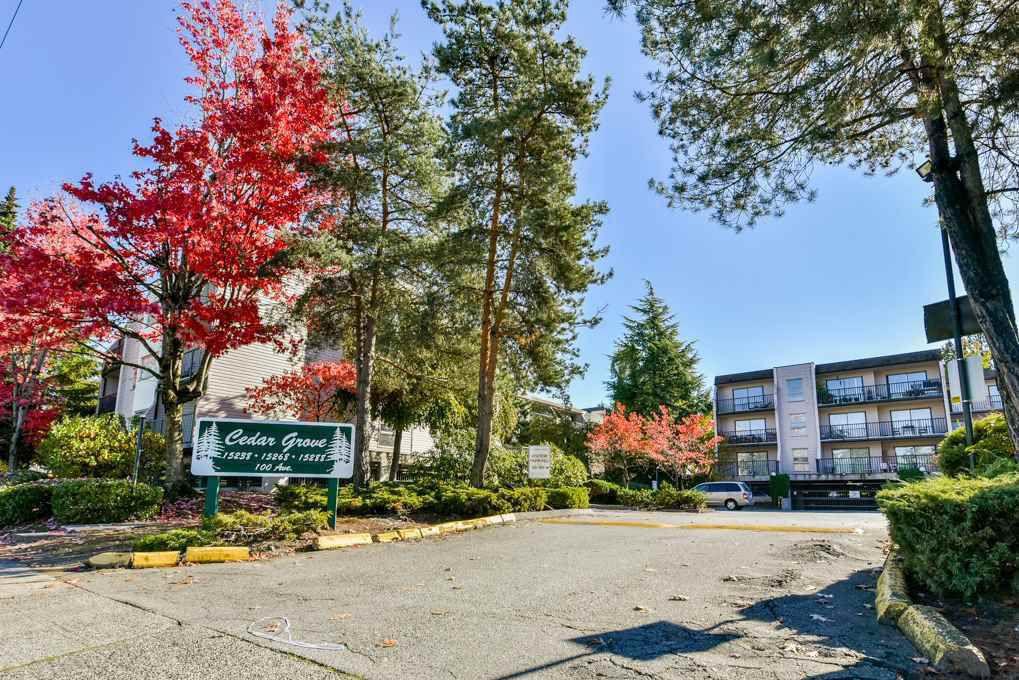 """Main Photo: 111 15268 100 Avenue in Surrey: Guildford Condo for sale in """"Cedar Grove"""" (North Surrey)  : MLS®# R2344601"""