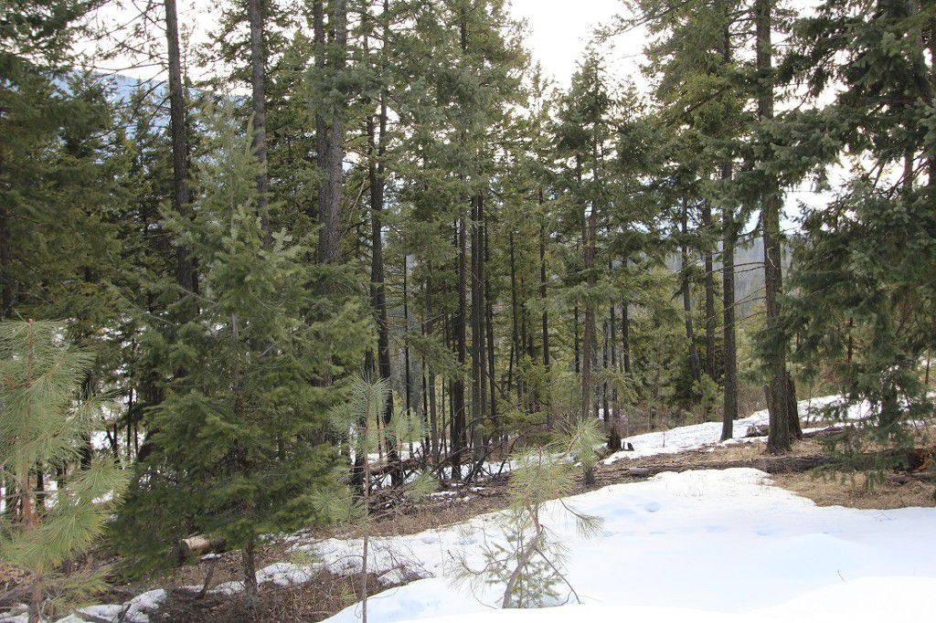 Main Photo: 33 2481 Squilax Anglemont Road in Lee Creek: Land Only for sale : MLS®# 10077079