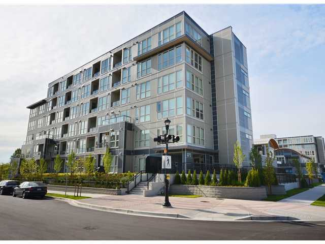 Main Photo: # 255 4099 STOLBERG ST in Richmond: East Cambie Condo for sale : MLS®# V1031862