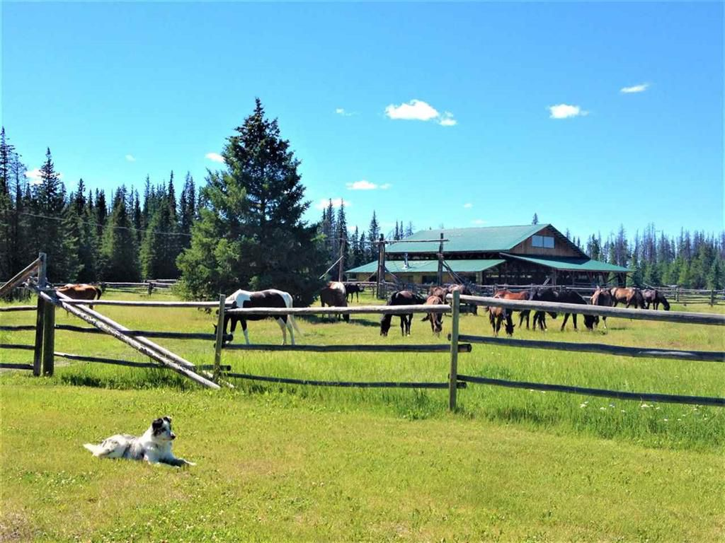 Main Photo: 7800 Farwell Canyon Road in Williams Lake: House for sale (Williams Lake (Zone 27))  : MLS®# R2297305