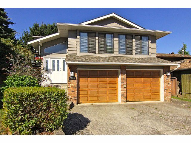 Main Photo: 3369 271B Street in Langley: Aldergrove Langley House for sale : MLS®# F1318472
