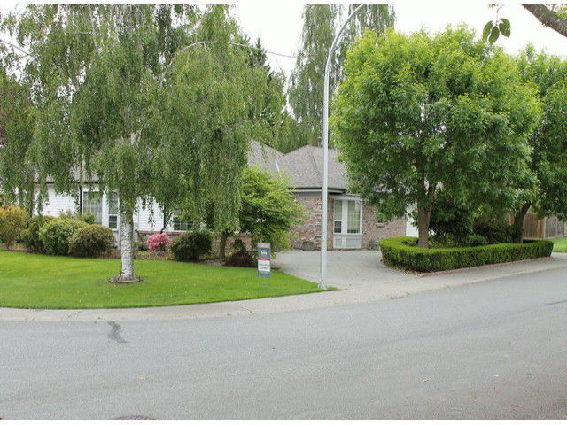"Main Photo: 1151 163RD Street in Surrey: King George Corridor House for sale in ""MCNALLY CREEK"" (South Surrey White Rock)  : MLS®# F1312659"