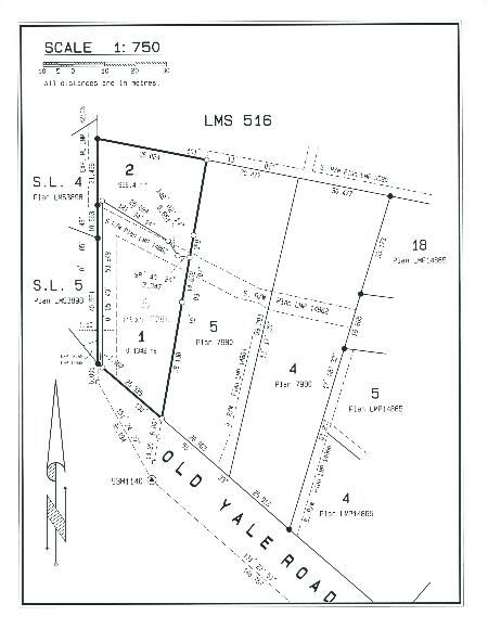 Main Photo: 14197 Sq. Ft. Lot Murrayville-Potential To Sudividable In Two In Future