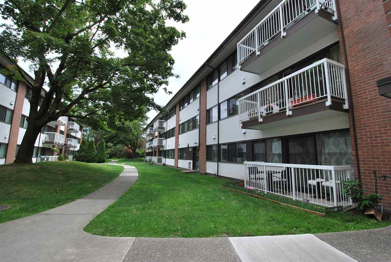 Main Photo: 103 8040 RYAN ROAD in Richmond: South Arm Condo for sale : MLS®# R2079966