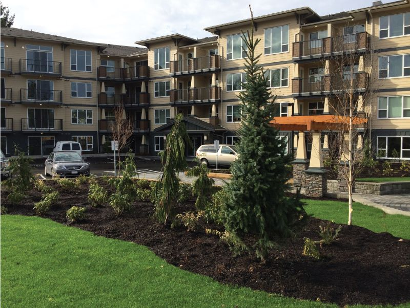 Main Photo: #303 2565 Campbell Ave. in Abbotsford: Central Abbotsford Condo for rent