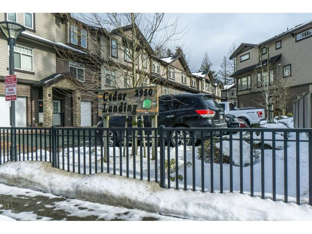 Main Photo: 19 2950 LEFEUVRE ROAD in Abbotsford: Aberdeen Townhouse for sale : MLS®# R2341349