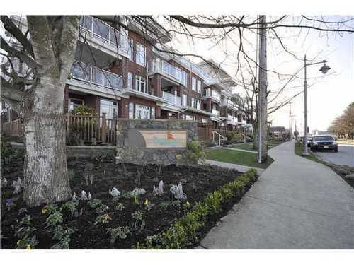 Main Photo: 105 4280 MONCTON Street in Richmond: Steveston South Home for sale ()  : MLS®# V874409