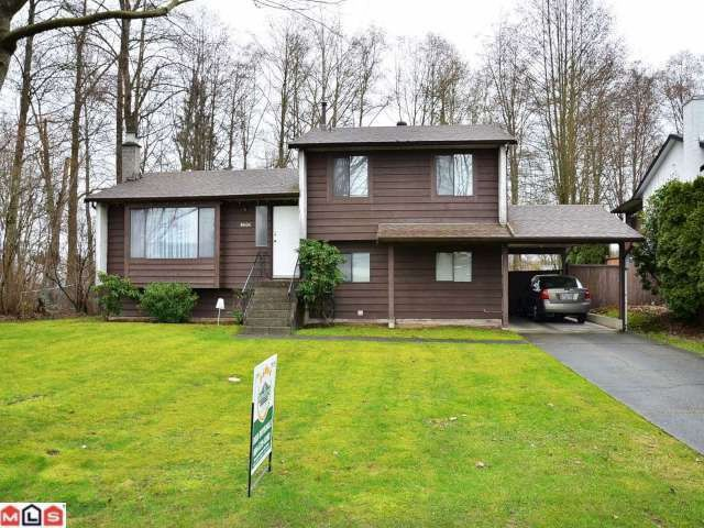 Main Photo: 8606 E TULSY Crescent in Surrey: Queen Mary Park Surrey House for sale : MLS®# F1204537