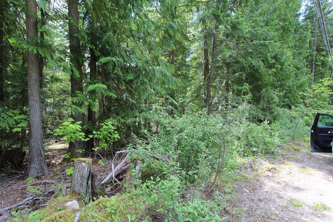Main Photo: Lot 96 Crowfoot Drive in Anglemont: North Shuswap Land Only for sale (Shuswap)  : MLS®# 10158355
