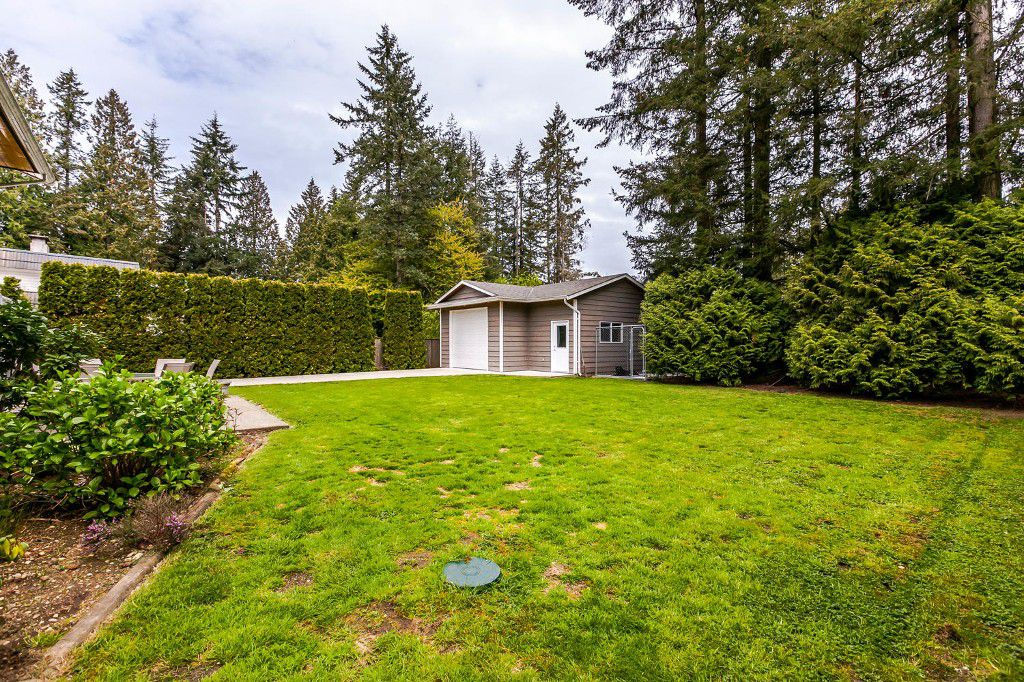 Photo 52: Photos: 4156 207A Street in Langley: Brookswood House for sale