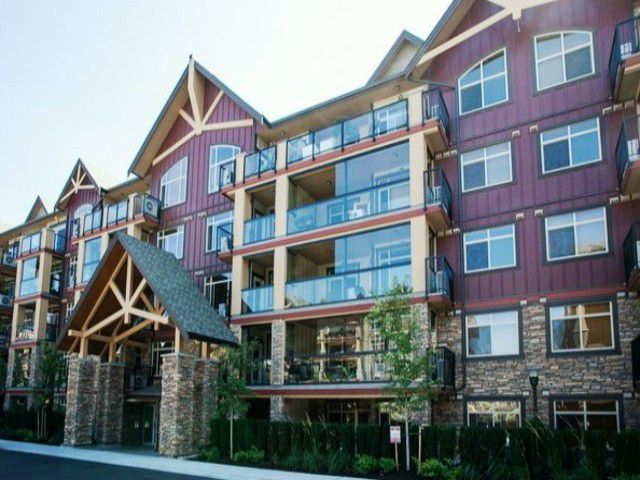 Main Photo: # 429 8288 207A ST in Langley: Willoughby Heights Condo for sale : MLS®# F1400603