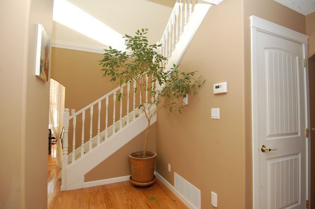 Photo 22: Photos: 6032 MCNEIL ROAD in DUNCAN: House for sale : MLS®# 329329