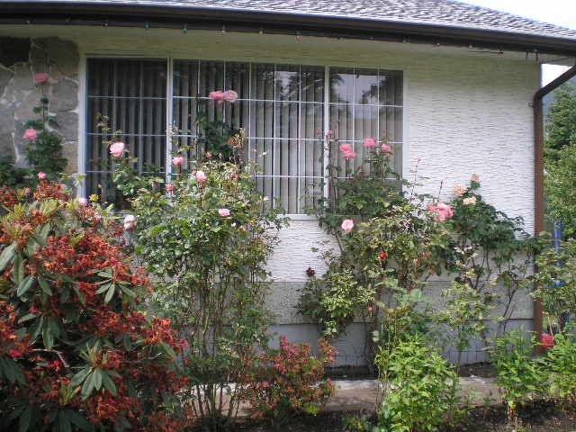Photo 2: Photos: 185 QUAMICHAN AVENUE in LAKE COWICHAN: House for sale : MLS®# 330937