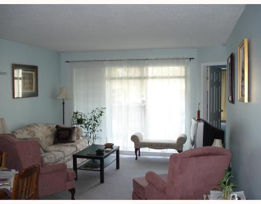 """Main Photo: 206 9867 MANCHESTER Drive in Burnaby: Cariboo Condo for sale in """"BARCLAY WOODS"""" (Burnaby North)  : MLS®# V709769"""