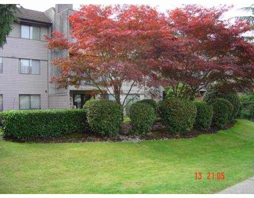 Main Photo: 311 520 COTTONWOOD Avenue in Coquitlam: Coquitlam West Condo for sale : MLS®# V673428