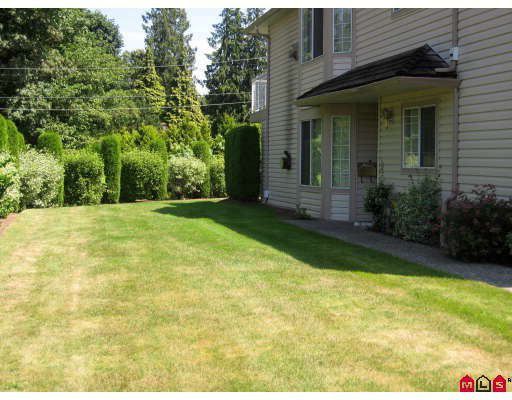 "Main Photo: 59 3110 TRAFALGAR Street in Abbotsford: Central Abbotsford Townhouse for sale in ""NORTHVIEW"" : MLS®# F2914124"