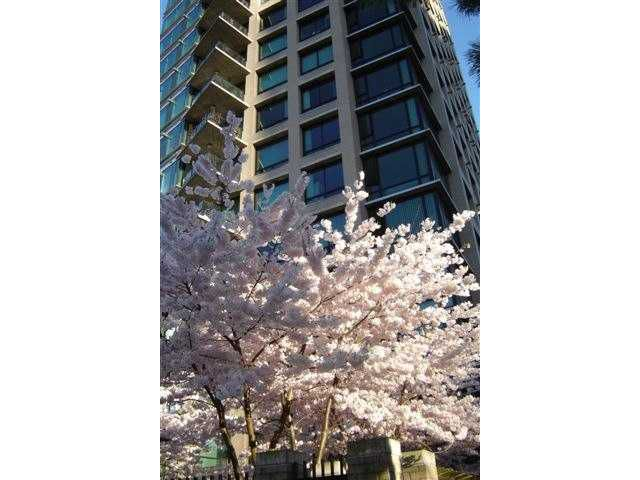 Main Photo: 705 1003 BURNABY Street in Vancouver: West End VW Condo for sale (Vancouver West)  : MLS®# V859703