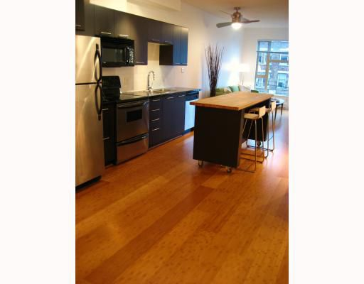 """Main Photo: 305 205 E 10TH Avenue in Vancouver: Mount Pleasant VE Condo for sale in """"HUB"""" (Vancouver East)  : MLS®# V745718"""