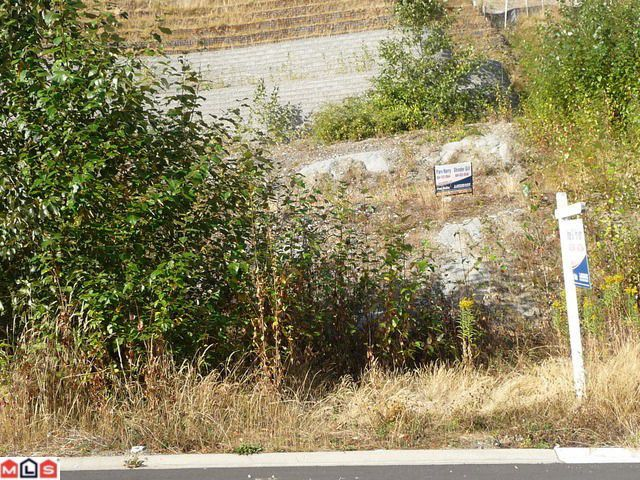 "Main Photo: 36507 CARNARVON Court in Abbotsford: Sumas Mountain Home for sale in ""Falcon Ridge"" : MLS®# F1021266"
