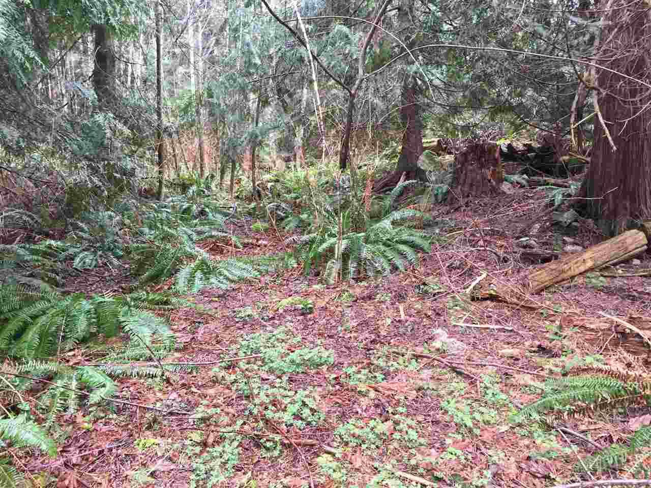 Main Photo: LOT D HEAL Road: Roberts Creek Home for sale (Sunshine Coast)  : MLS®# R2149518
