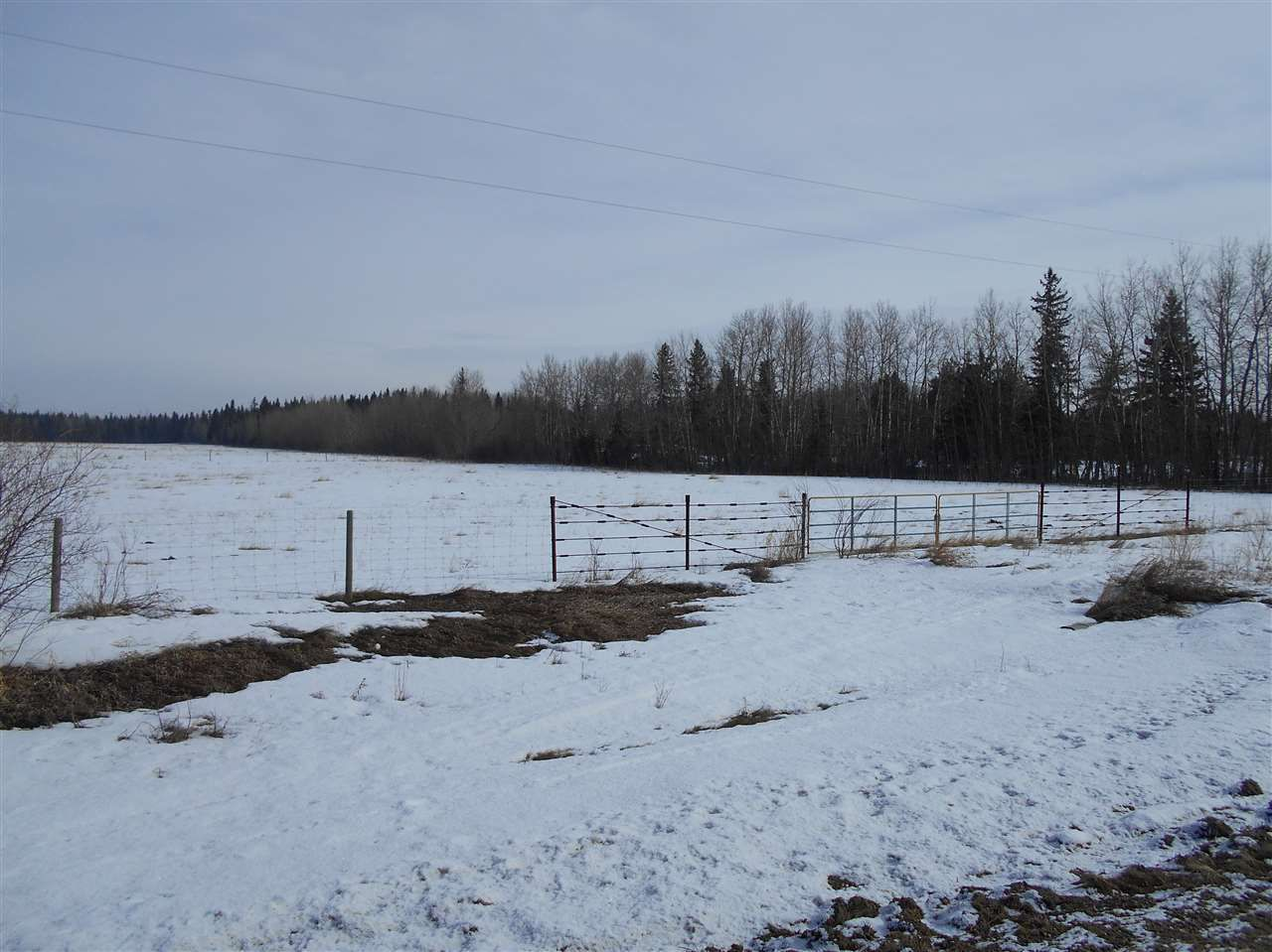 Main Photo: 5422A Twp Rd 522: Rural Parkland County Rural Land/Vacant Lot for sale : MLS®# E4107341