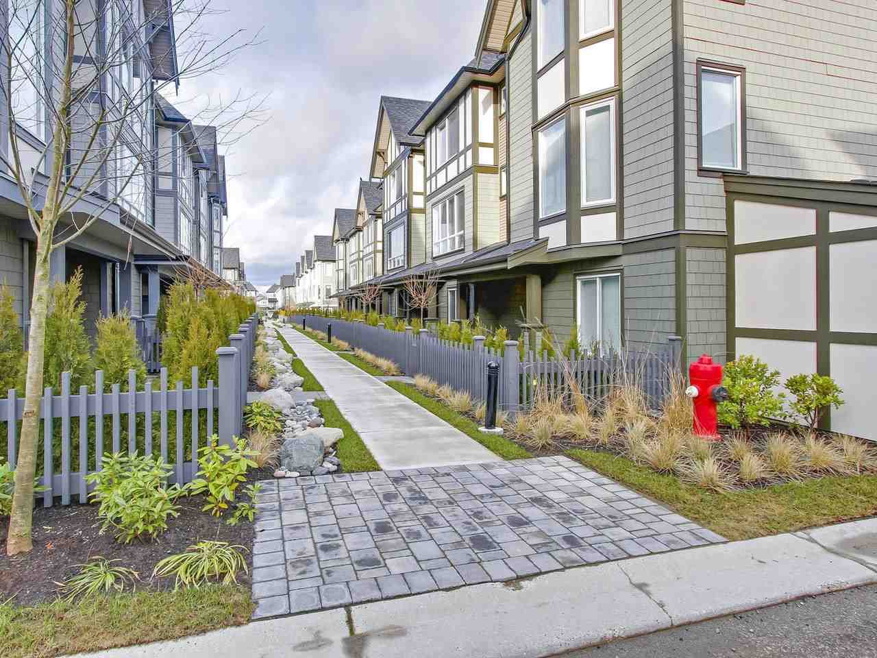 """Main Photo: 36 8138 204 Street in Langley: Willoughby Heights Townhouse for sale in """"Ashbury & Oak"""" : MLS®# R2235777"""