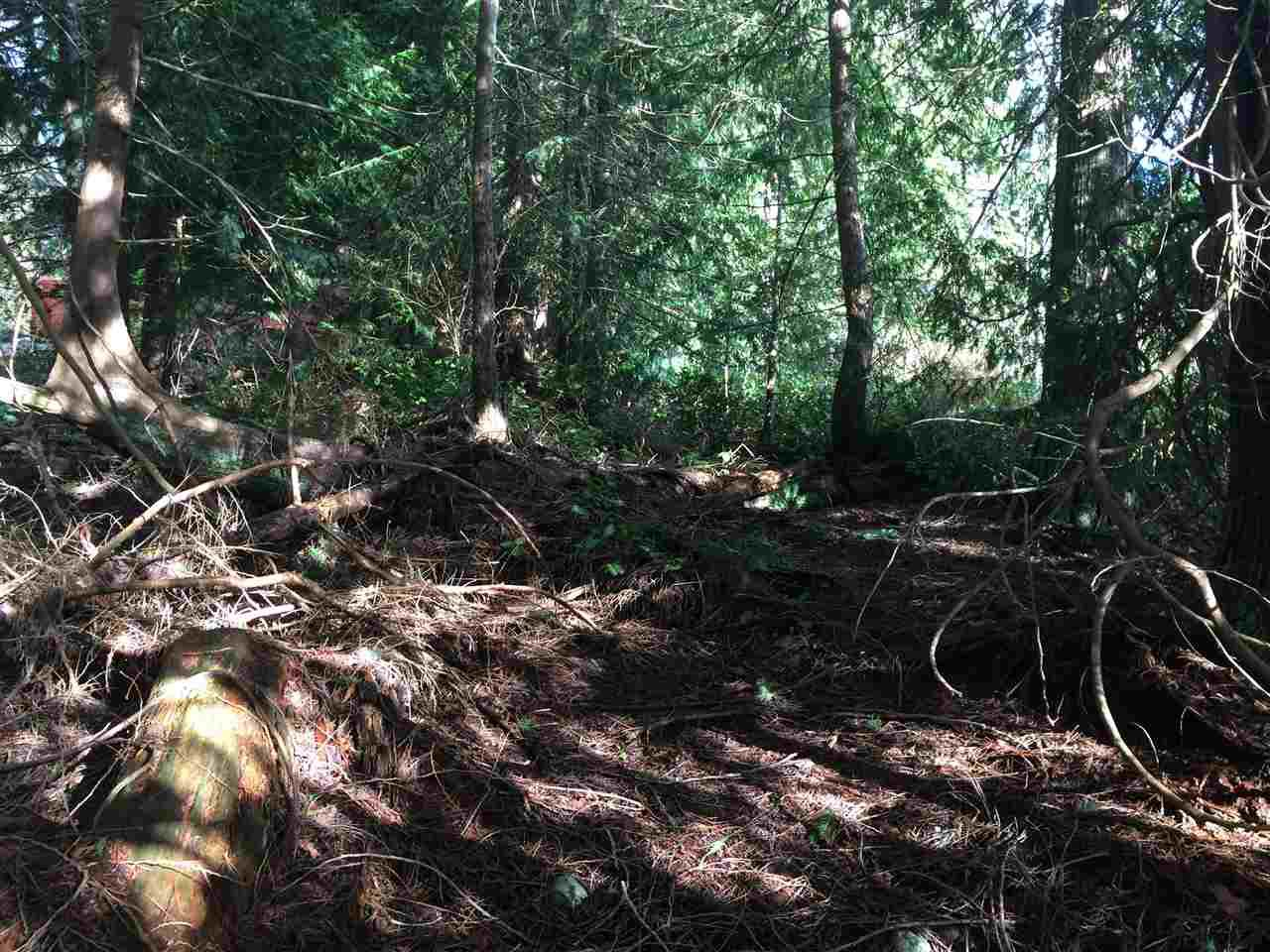 "Photo 5: Photos: LOT 1 GRANDVIEW Road in Gibsons: Gibsons & Area Home for sale in ""BONNIEBROOK"" (Sunshine Coast)  : MLS®# R2239418"