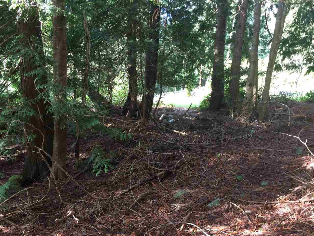 "Photo 3: Photos: LOT 1 GRANDVIEW Road in Gibsons: Gibsons & Area Home for sale in ""BONNIEBROOK"" (Sunshine Coast)  : MLS®# R2239418"
