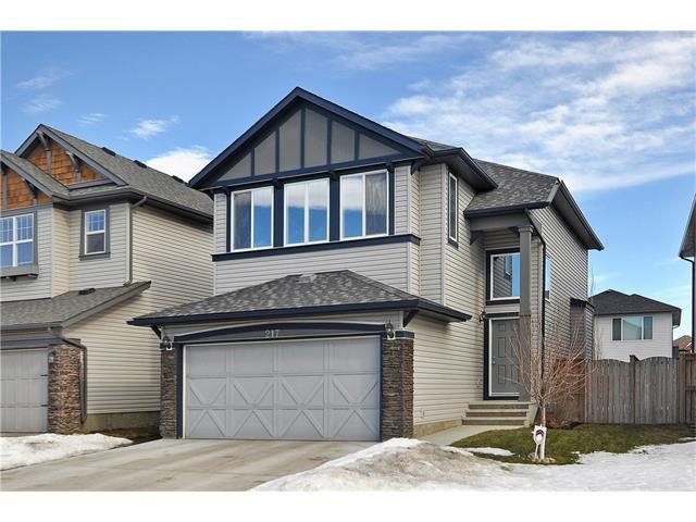 Main Photo: 217 BRIGHTONWOODS Gardens SE in Calgary: New Brighton House for sale : MLS®# C4099705