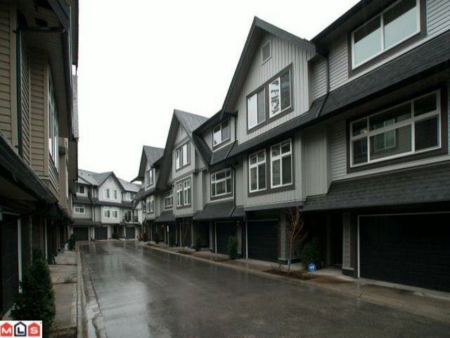 "Main Photo: 14 15192 62A Avenue in Surrey: Sullivan Station Townhouse for sale in ""ST. JAMES GATE"" : MLS®# F1104157"
