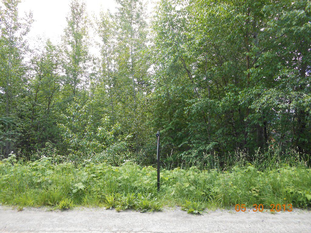 Main Photo: 247 Aspen Road in Anglemont: Land Only for sale : MLS®# 10066280