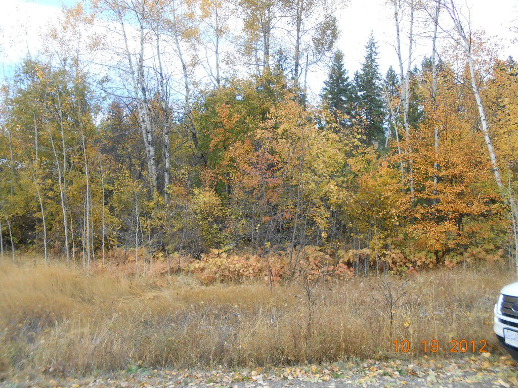 Main Photo: 3 2481 Squilax Anglemont Road in Lee Creek: Land Only for sale : MLS®# 10055686