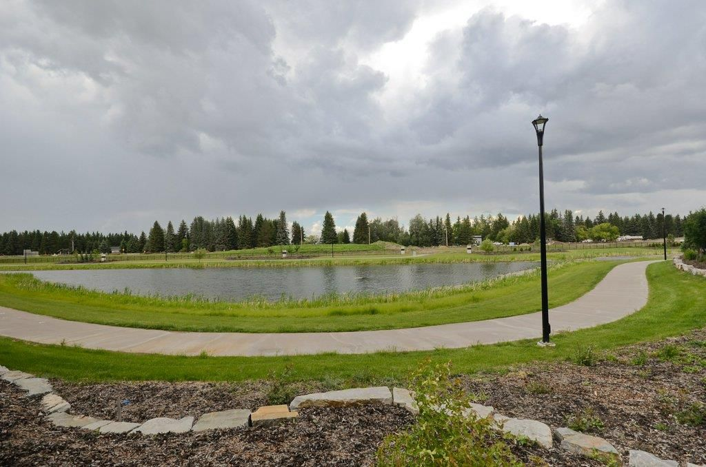 Photo 27: Photos: 919 WOOD Place in Edmonton: Zone 56 House for sale : MLS®# E4140831