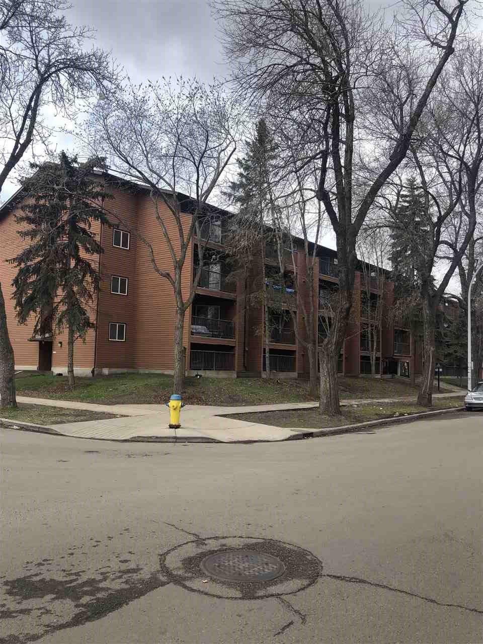 Main Photo:  in Edmonton: Zone 13 Condo for sale : MLS®# E4157007