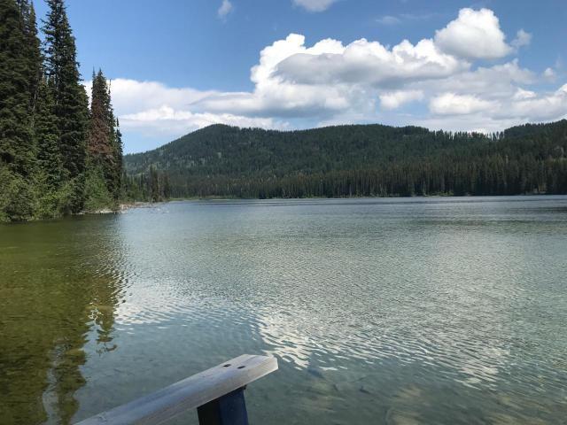 Main Photo: 4373 HYAS LAKE FS ROAD in : Pinantan Recreational for sale (Kamloops)  : MLS®# 147499