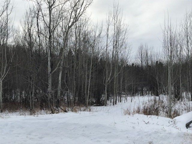 Main Photo: 15 50529 RGE RD 21 Road: Rural Parkland County Rural Land/Vacant Lot for sale : MLS®# E4098412