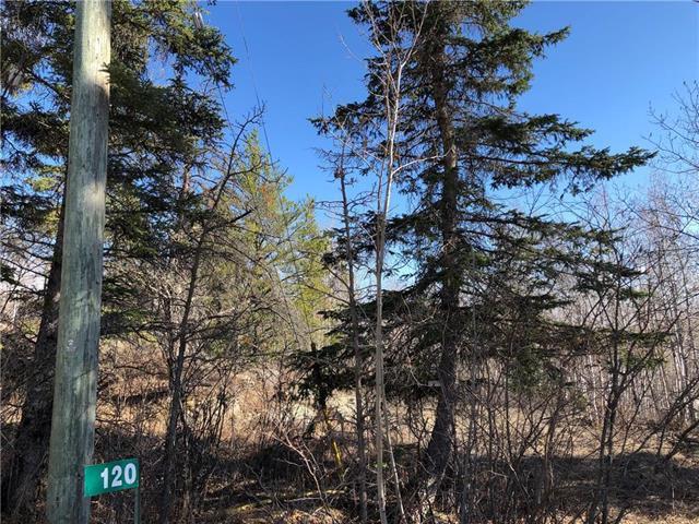 Main Photo: 120 Pine Ridge Drive in Alexander RM: Auglen Park Residential for sale (R28)  : MLS®# 1905051