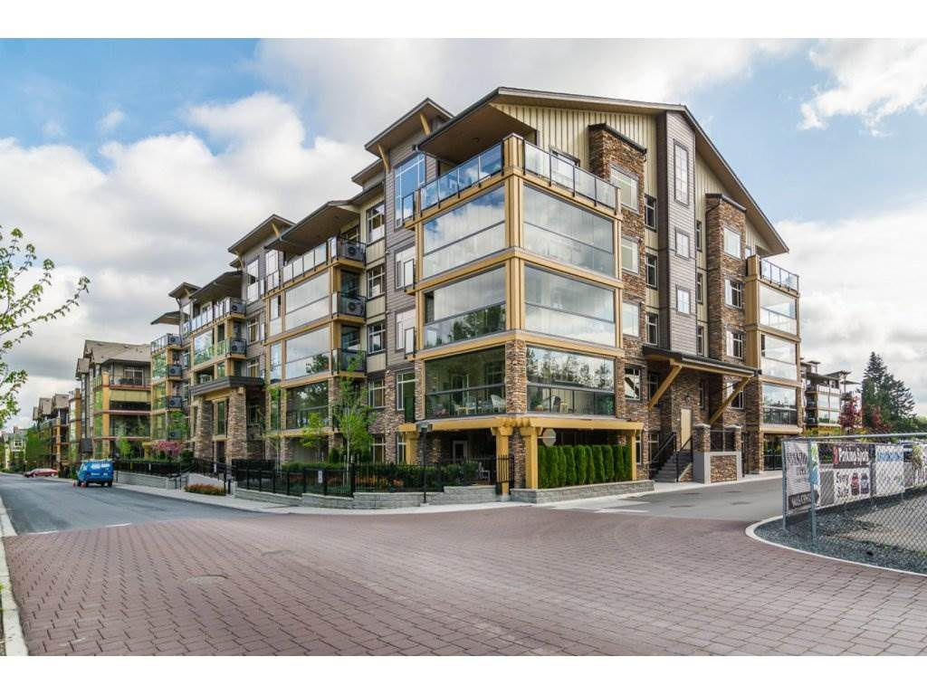 "Main Photo: 203 8258 207A Street in Langley: Willoughby Heights Condo for sale in ""Yorkson Creek"" : MLS®# R2237374"