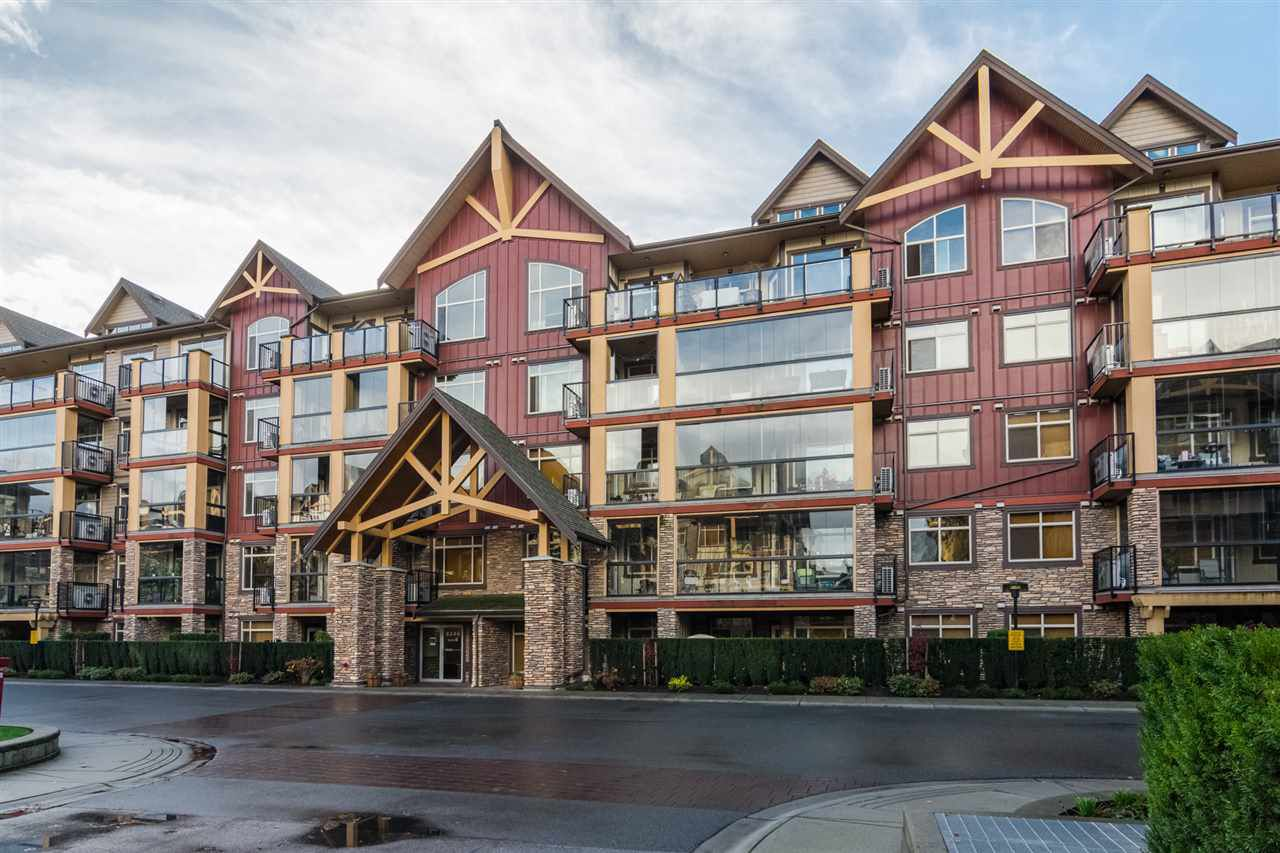 """Main Photo: 241 8288 207A Street in Langley: Willoughby Heights Condo for sale in """"Yorkson Creek Walnut Ridge II"""" : MLS®# R2222311"""