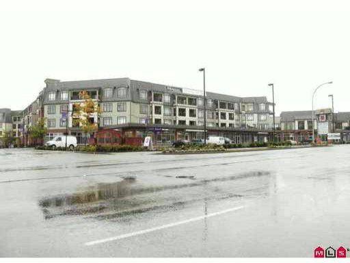 Main Photo: 403 8880 202ND Street in Langley: Walnut Grove Condo for sale : MLS®# F1114011