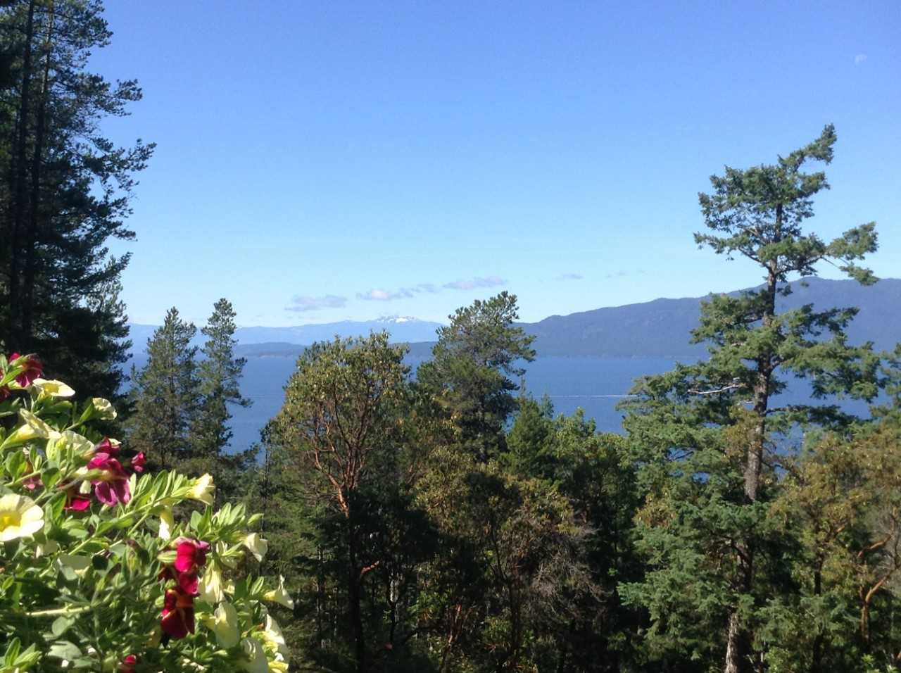 "Photo 3: Photos: 11808 SUNSHINE COAST Highway in Pender Harbour: Halfmn Bay Secret Cv Redroofs House for sale in ""MIDDLEPOINT"" (Sunshine Coast)  : MLS®# R2102704"