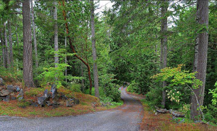 "Photo 12: Photos: 11808 SUNSHINE COAST Highway in Pender Harbour: Halfmn Bay Secret Cv Redroofs House for sale in ""MIDDLEPOINT"" (Sunshine Coast)  : MLS®# R2102704"
