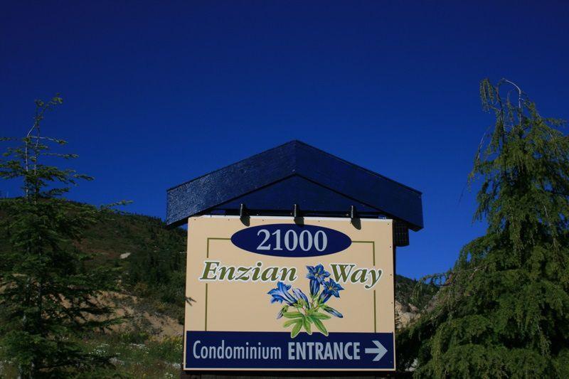 Main Photo: 308B 21000 ENZIAN Way in Agassiz: Hemlock Condo for sale (Mission)  : MLS®# R2361341