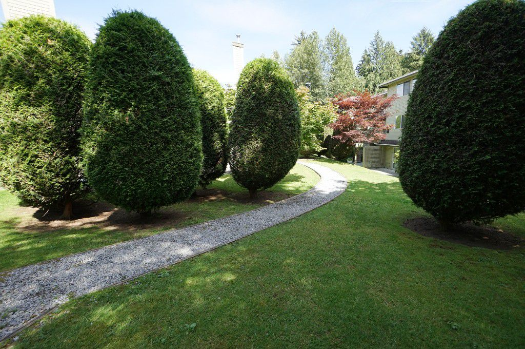 """Photo 16: Photos: 135 1386 LINCOLN Drive in Port Coquitlam: Oxford Heights Townhouse for sale in """"MOUNTAIN PARK VILLAGE"""" : MLS®# R2083208"""