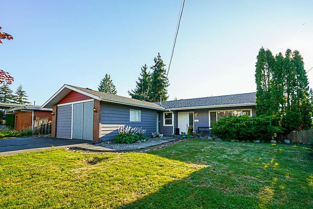 Main Photo: 12087 227 Street in Maple Ridge: East Central House for sale : MLS®# R2291699
