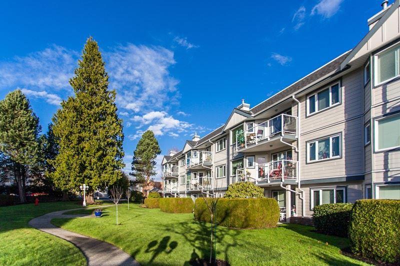 "Main Photo: 111 13965 16 Avenue in Surrey: Sunnyside Park Surrey Condo for sale in ""White Rock Village"" (South Surrey White Rock)  : MLS®# R2017987"